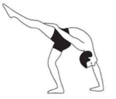 blog  karuna yogabest yoga teacher training course